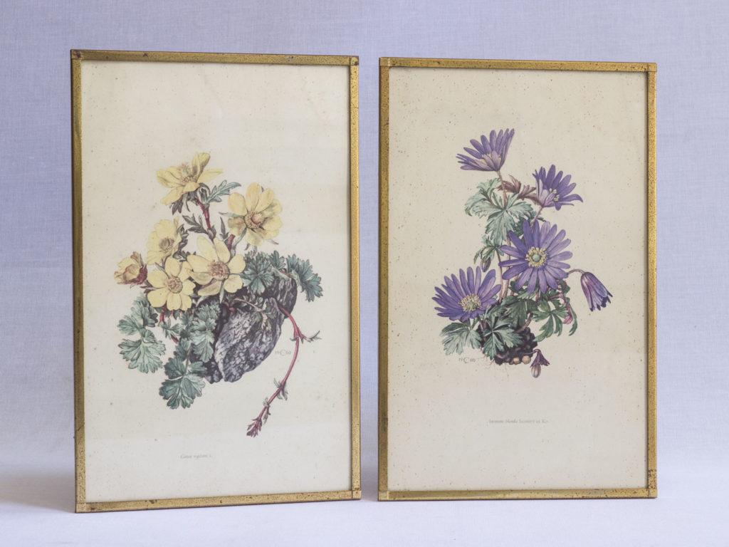Lot de deux gravures fleuries
